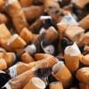 Modifications à la Loi concernant la lutte au tabagisme.